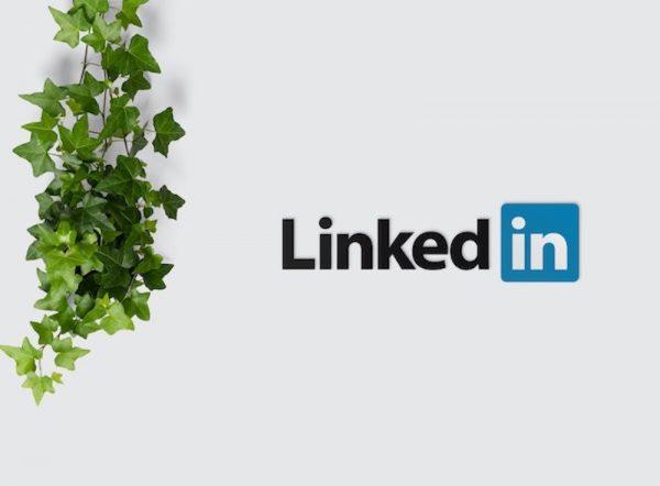 Comment faire la promotion de son livre sur LinkedIn?